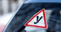 В Омске курсантка автошколы сбила 11-летнего мальчика