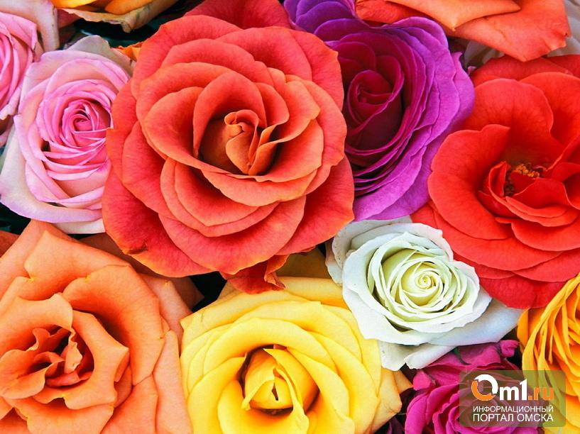Жителей Омской области наказали за продажу роз