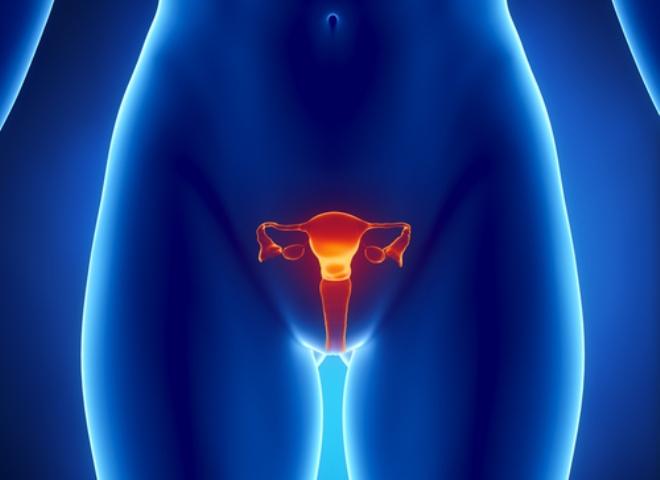 Осмотр гинеколога: какие заболевания легко выявить?