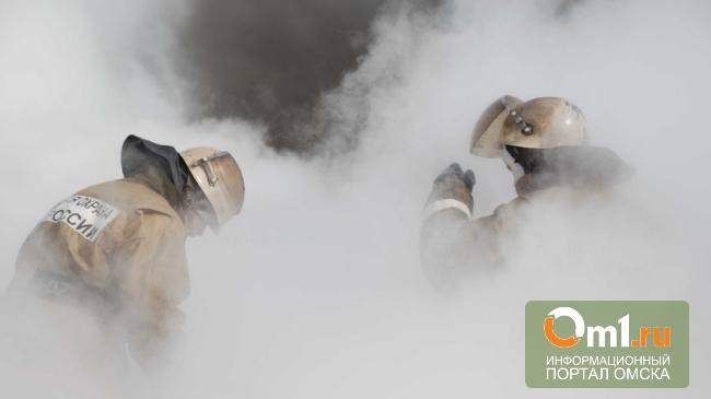 Greenpeace прогнозирует пожарную катастрофу в Омской области