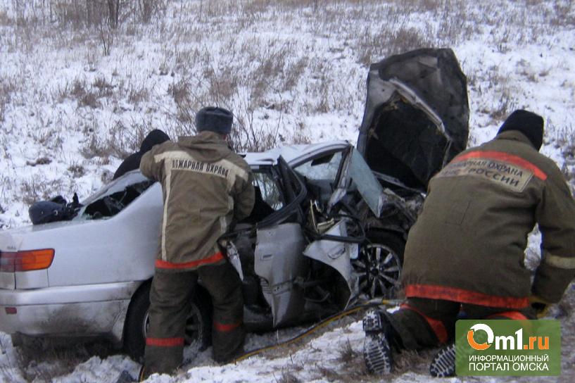 Полиция установила личности пятерых погибших в ДТП под Омском