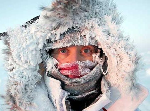 В Омске этой зимой может заработать первая теплая автобусная остановка