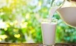 Молокозаводы Омской области ждет глобальная проверка Роспотребнадзора
