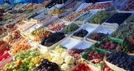 Египет готов заполнить прилавки российских магазинов молочной и растительной продукцией