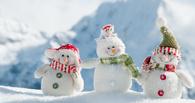 Омичи собираются лепить снеговиков в знак протеста