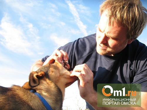 На ветеринарной станции в Омской области работали люди без образования