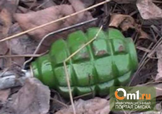 Омский полицейский нашел между гаражами учебную гранату