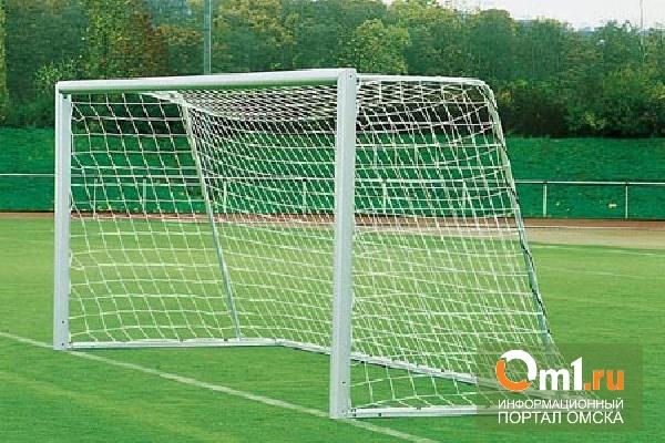 В Омске на ребенка упали еще одни футбольные ворота