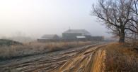 На ремонт сельских дорог в Омской области потратят 367 млн рублей