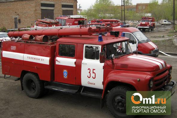 В Омской области на пожаре погибла семья