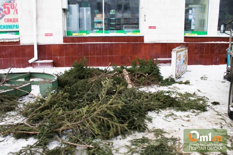 В Омск окончательно пришла весна: елку у «Каскада» убрали