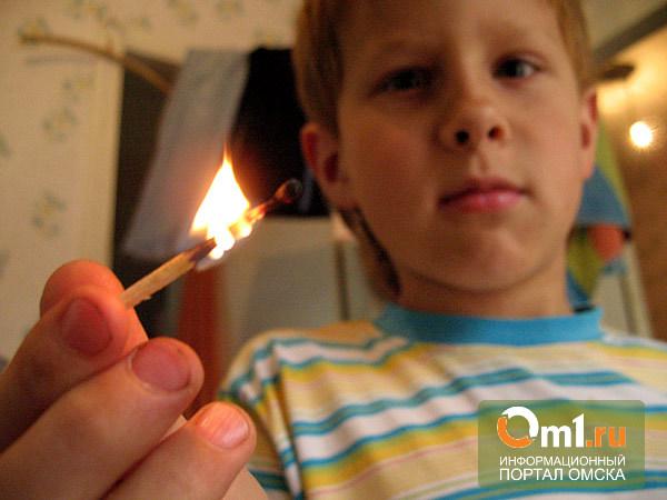 В Омской области дети сожгли 19 тюков сена