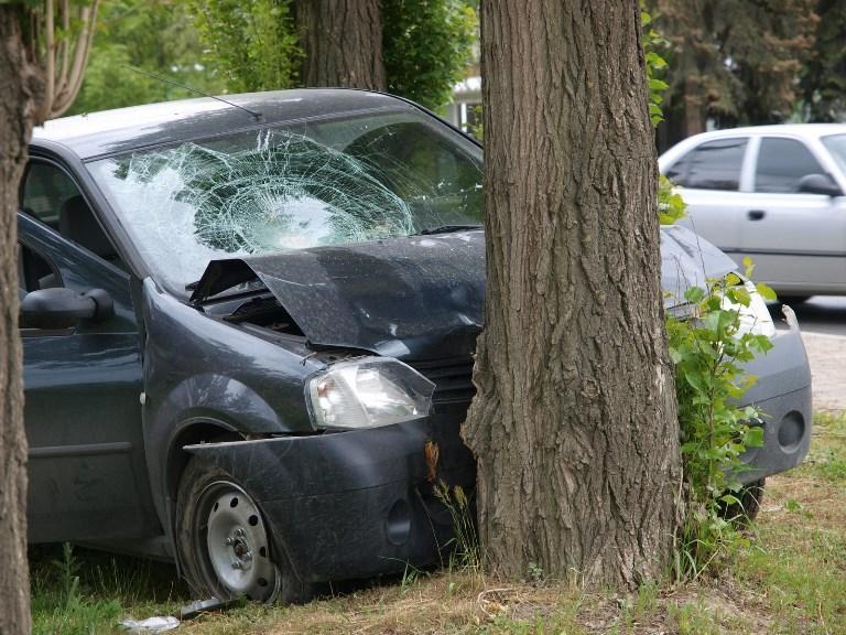 В Омске автомобиль врезался в дерево – пострадал 3-летний ребенок