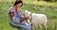 В Омской области 25-летняя девушка украла козу