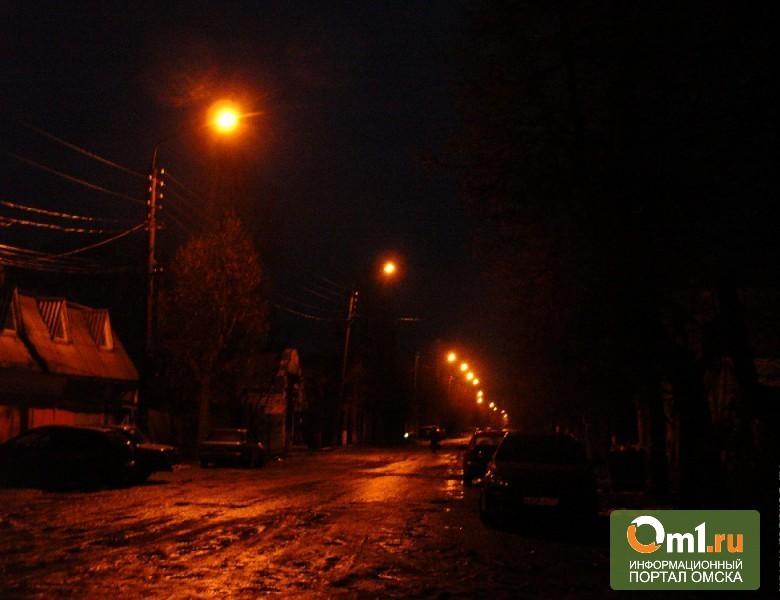В Омске и области возле 160 школ и детсадов нет освещения