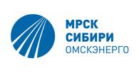 Высокую государственную награду получил работник Омскэнерго Анатолий Козлов.