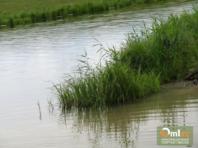 В Омской области утонули еще двое мужчин
