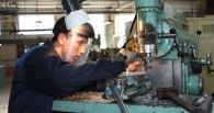 Омские школьники начали выбирать рабочие профессии