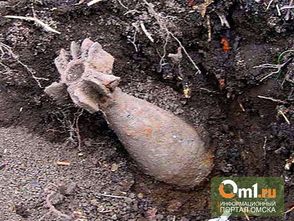 Омичка на вечерней прогулке нашла снаряд от миномета
