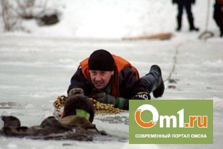 Лед на Иртыше становится опасным