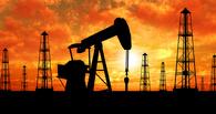 Цена на нефть впервые за 12 лет упала ниже 30 долларов за баррель