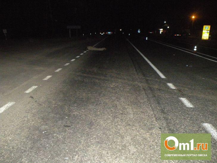 На трассе под Омском иномарка и грузовик дважды сбили пешехода
