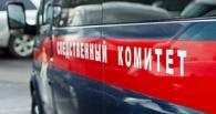 В Новосибирске будут судить омича, который надругался над двумя девочками