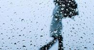 МЧС предупреждает омичей о ЧП из-за плохой погоды