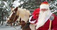 Резиденцию Деда Мороза в Омске откроют в дендропарке