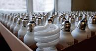 Омичи будут сдавать ртутьсодержащие лампы в спецприемники