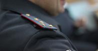 Омская полиция назначила проверку случая с таксой, облитой кислотой