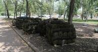 В омский сквер завезли газон