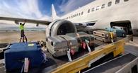Минтранс согласен с «Победой»: в интересах пассажиров необходимо отменить включенный в тариф багаж