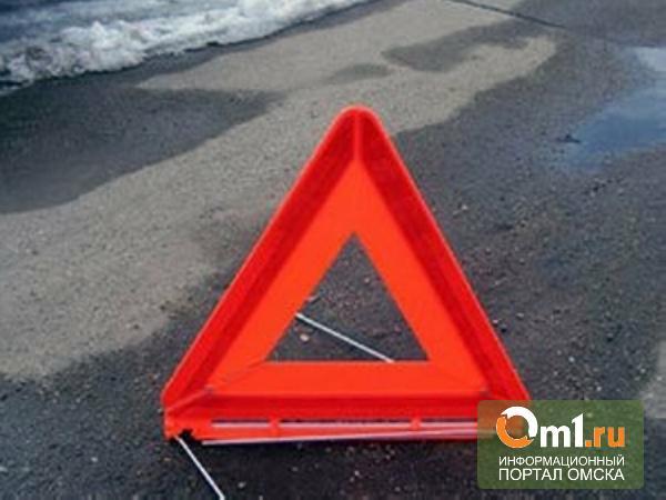В Омской области на трассе перевернулась иномарка