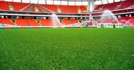 На манеже «Красная звезда» появится газон за 8,4 млн рублей