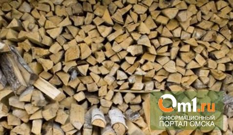 В Омской области частный дом чуть не сгорел из-за электроплиты в дровянике