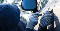 Омские студенты сбежали из общаги, чтобы ограбить автомобили