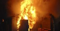 В Омской области сгорела тонна сена, девять животных и 25 птиц