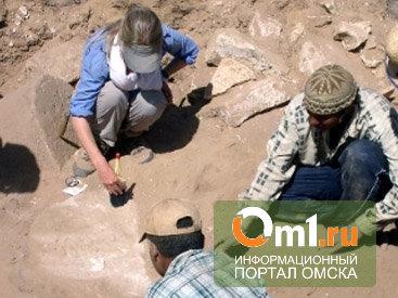 «Стоянку Омскую» «раскопают» в дни Первой международной археологической школы