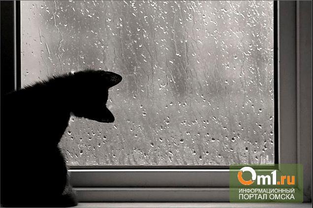 Прогноз погоды в Омске до конца мая удручает: дождь, холод, заморозки