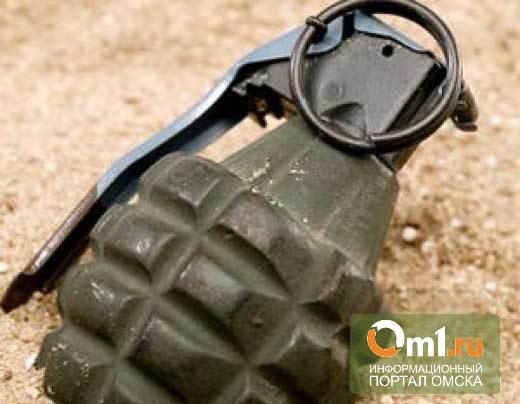 В Омске в мусорном баке нашли гранату Ф-1