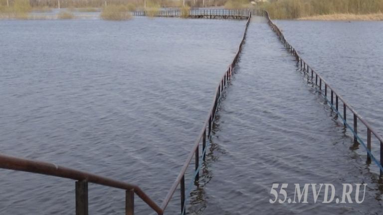 В Тевризском районе Омской области вода разрушила мост