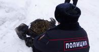 В Омске в машине у полицейского нашли наркотики