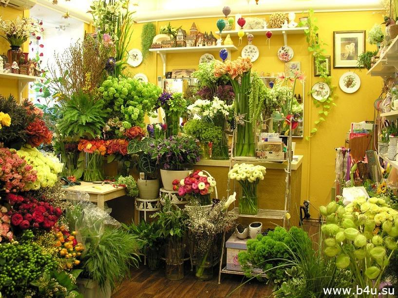 Цветочный город: практически на каждом квадратном километре в Омске можно купить цветы