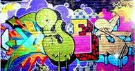 Омских школьников научат технике граффити в Школе технологий и открытий
