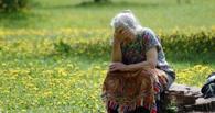 В Омской области в лесу потеряли пенсионерку