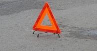 В результате ДТП на трассе Омск-Новосибирск погиб 3-летний ребенок