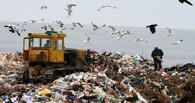 После закрытия полигона у Надеждино отходы хотят везти в Черлак