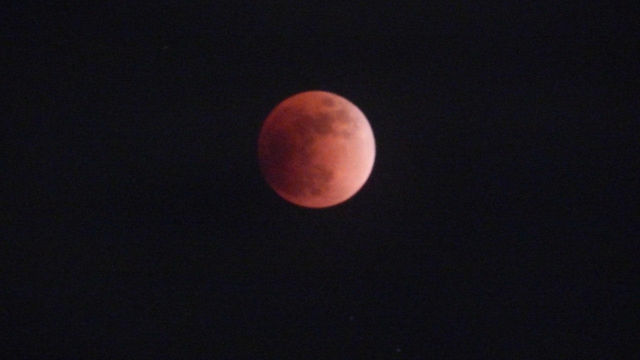 Красная Луна иСуперлуние: реакция социальных сетей