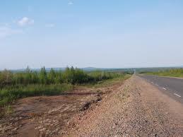 В Омской области нашли тело сбитой на трассе женщины